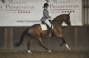 Diva, Prinsenstad jonge paardencompetitie