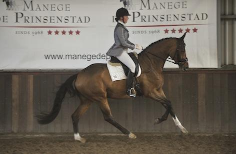 Een paard heeft van nature een meewerkend karakter, het paard geeft zich volledig na training intern