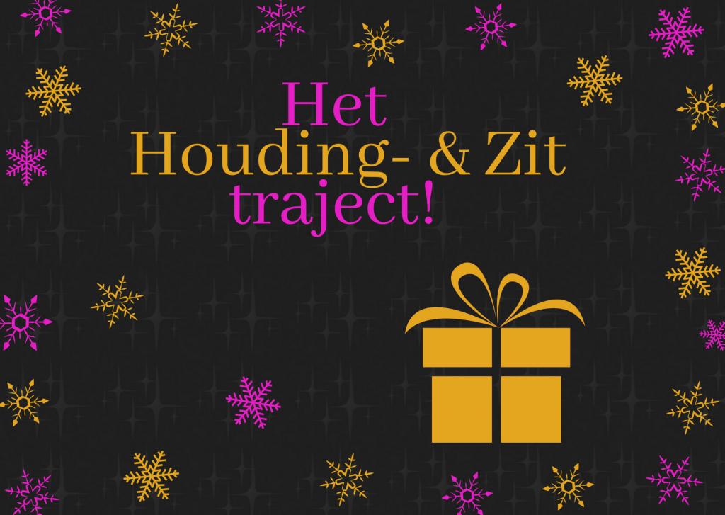 Het Houding & Zit traject