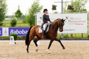Equinova's Wendel, rijden met een Grand-prix paard, ieders droom, toch?
