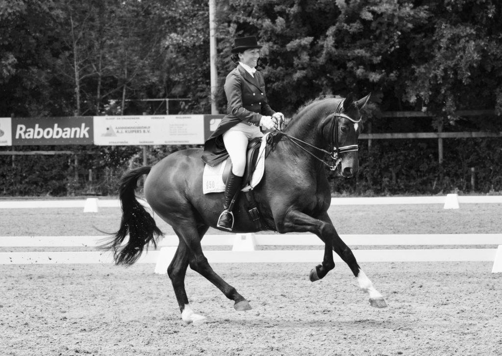 Zowel ruiter Nicky Star als paard Wendel: Happy AthleteS