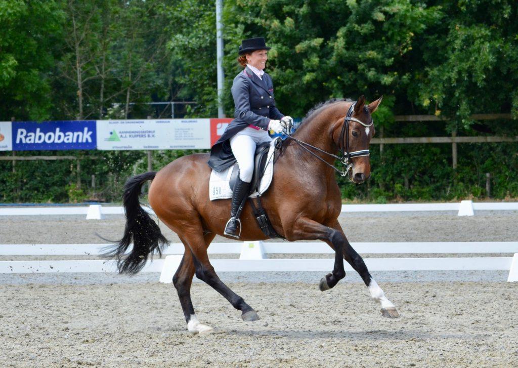 Grand Prix paard Wendel ook ter lease beschikbaar