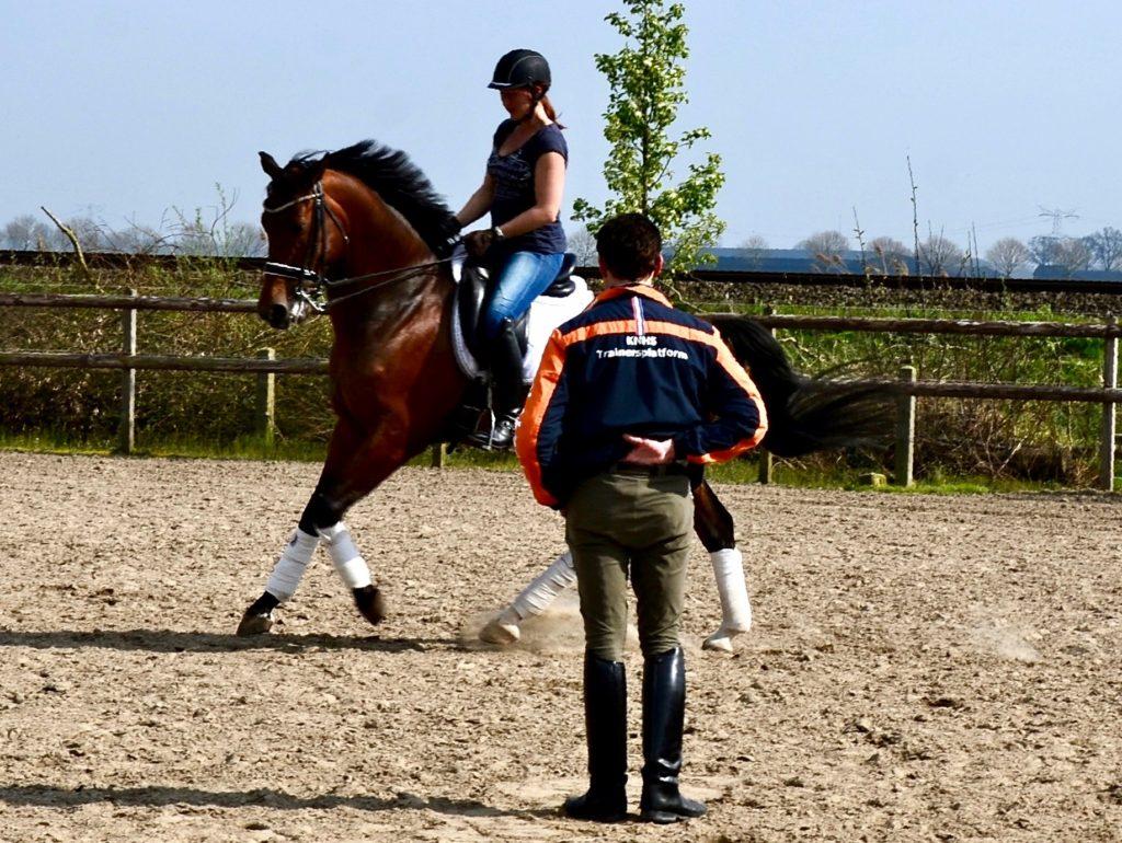 Tonnie is ook geen ik-bestuur-op-afstand-het-paard-instructeur