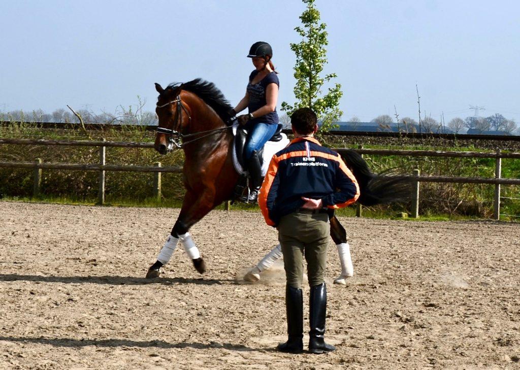 Tonnie Huberts geeft Nicky Star begeleiding met Equinova's Bruce tijdens een training