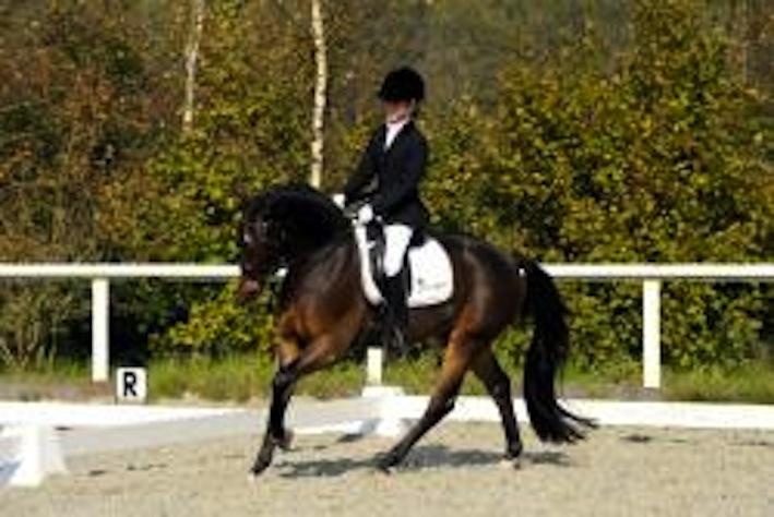 Ik mocht aan de voet staan van het talent en succes van Daphne van Peperstraten met toen haar pony Make My Day