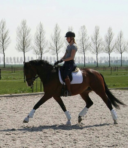 Expertise instructie & training: Samantha met haar eigen gefokte Donnatella