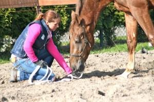 Nicky met Bolero in de oefening hoofd laag, kennis van het paard is alles