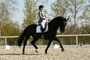 Geluk straalt van het gezicht van Nicky en haar paard Tzigane tijdens een wedstrijd